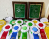4-H Livestock Judging Team Wins Awards