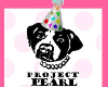 Project Pearl - 1 Year Birthday Party!
