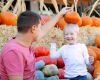 Pumpkin Pick Hayrides at Tanglewood Park