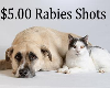 Low-cost Rabies Clinic to be held April 20 at Dixie Classic Fairgrounds Cattle Barn