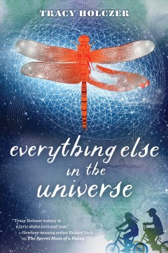 Everything Else in the Universe