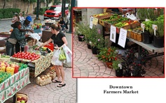 Farmer's Market held in downtown Winston-Salem