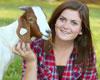 Clover Classic 4-H Livestock Show